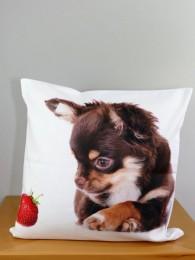 Digitaldruck Kissenhülle in weiß mit niedlichem Chihuahua- Motiv