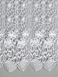 Spitzengardine Anemone detailbild